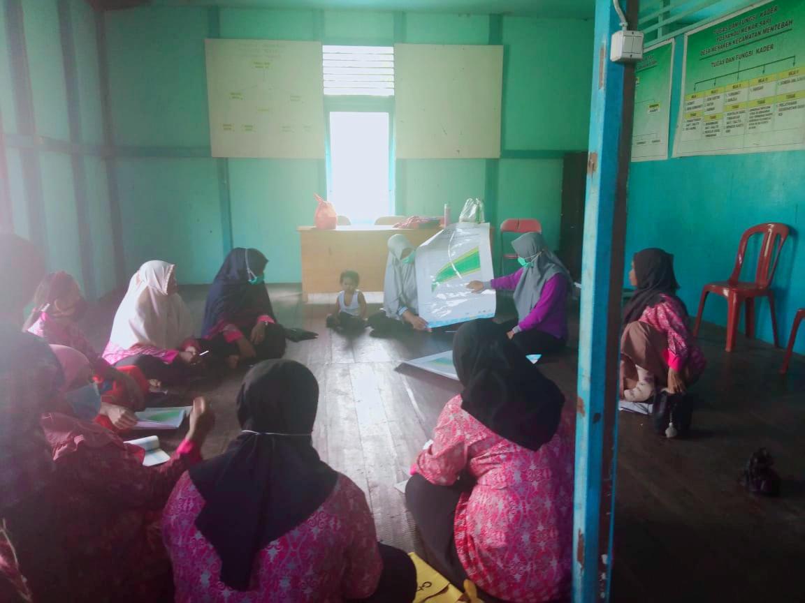 Puskesmas Mentebah Tingkatkan Kapasitas Kader Posyandu Desa Menarin